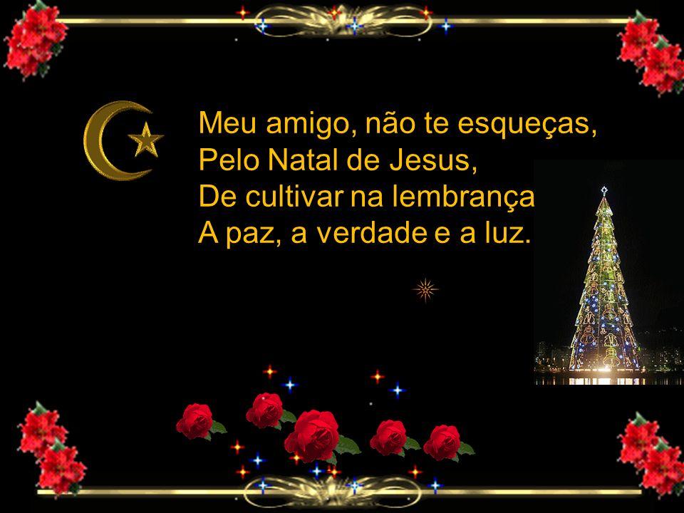 Feliz Natal & Prospero Ano Novo. São os votos da Diretoria da Sociedade Espírita Maria Nunes
