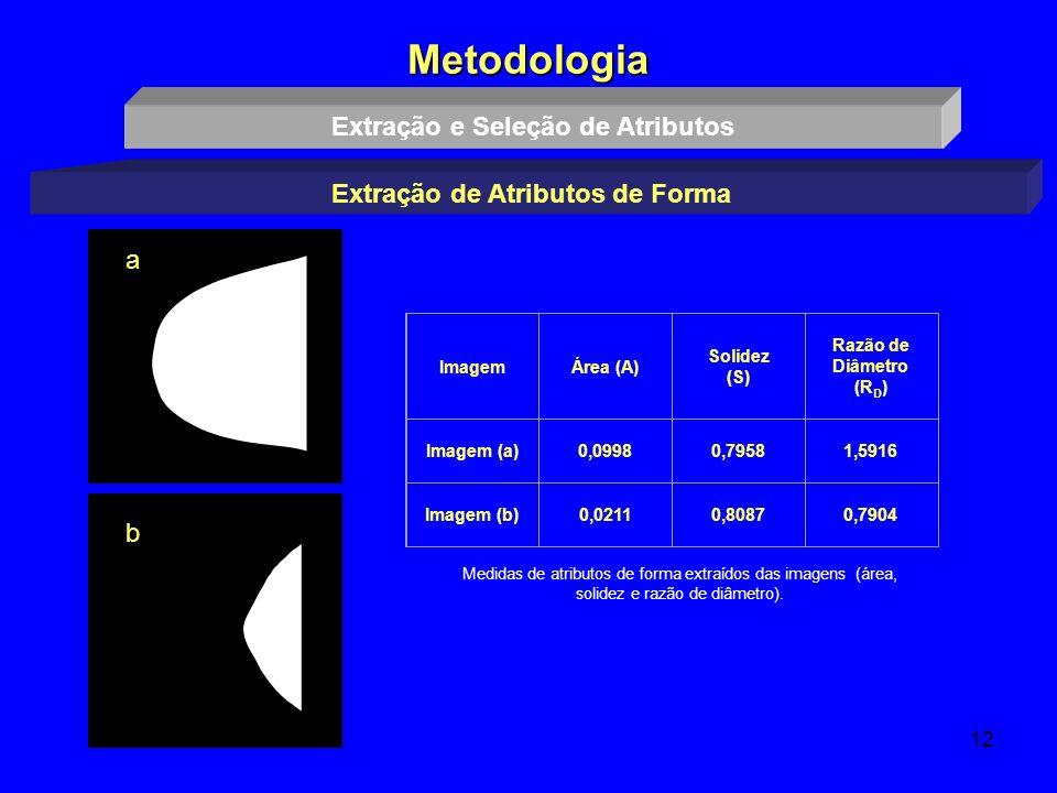 12 Metodologia Extração e Seleção de Atributos Extração de Atributos de Forma ImagemÁrea (A) Solidez (S) Razão de Diâmetro (R D ) Imagem (a)0,09980,79