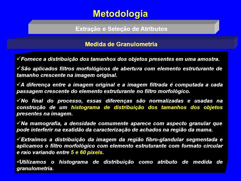 13 Metodologia Extração e Seleção de Atributos Medida de Granulometria Fornece a distribuição dos tamanhos dos objetos presentes em uma amostra. São a
