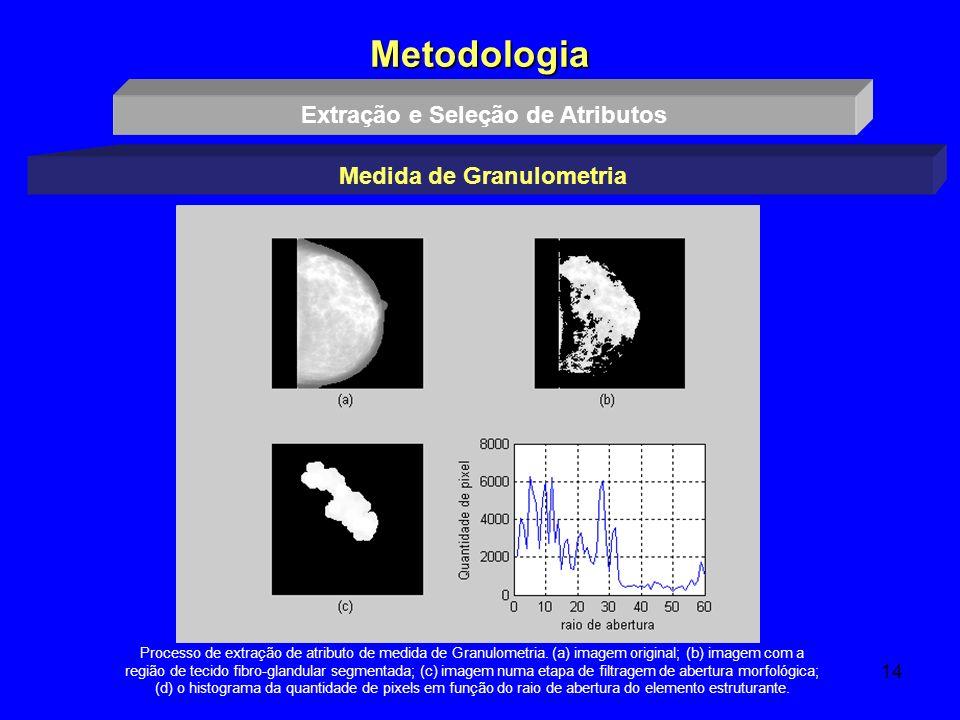 14 Metodologia Extração e Seleção de Atributos Medida de Granulometria Processo de extração de atributo de medida de Granulometria. (a) imagem origina