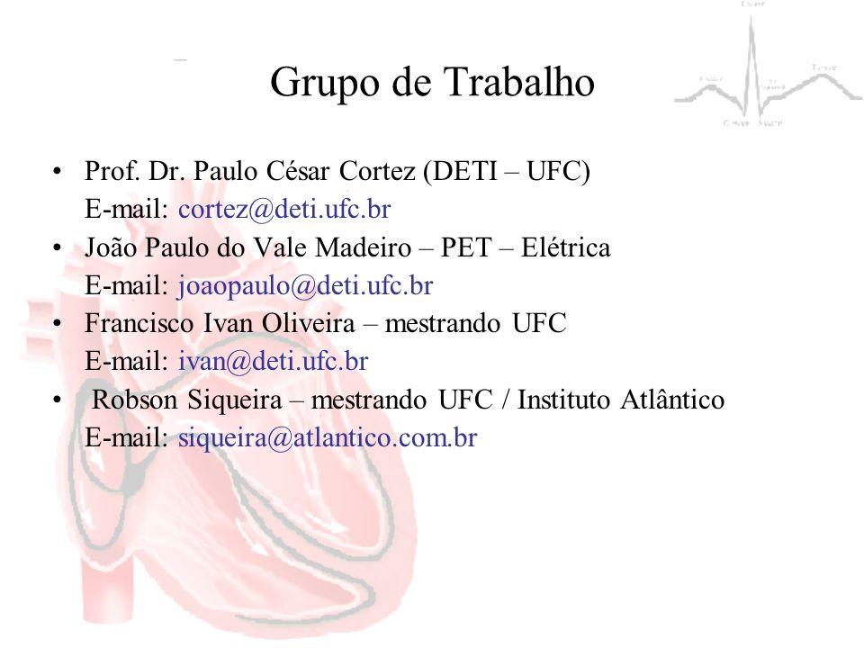 Grupo de Trabalho Prof. Dr. Paulo César Cortez (DETI – UFC) E-mail: cortez@deti.ufc.br João Paulo do Vale Madeiro – PET – Elétrica E-mail: joaopaulo@d