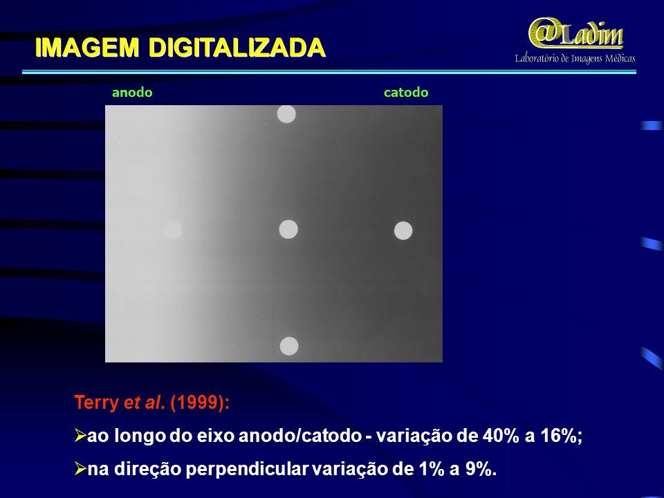 IMAGEM DIGITALIZADA anodo catodo Terry et al. (1999): ao longo do eixo anodo/catodo - variação de 40% a 16%; na direção perpendicular variação de 1% a