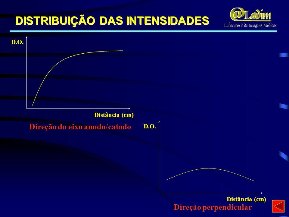 DISTRIBUIÇÃO DAS INTENSIDADES Direção perpendicular D.O. Distância (cm) Direção do eixo anodo/catodo D.O. Distância (cm)