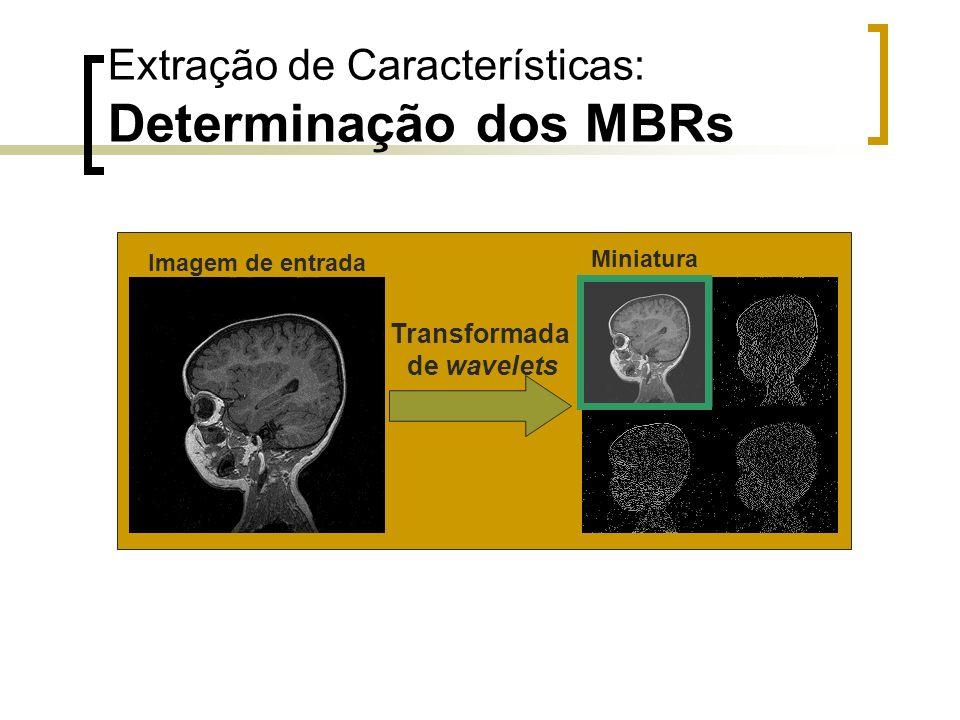 Extração de Características: Determinação dos MBRs Imagem de entrada Miniatura Transformada de wavelets