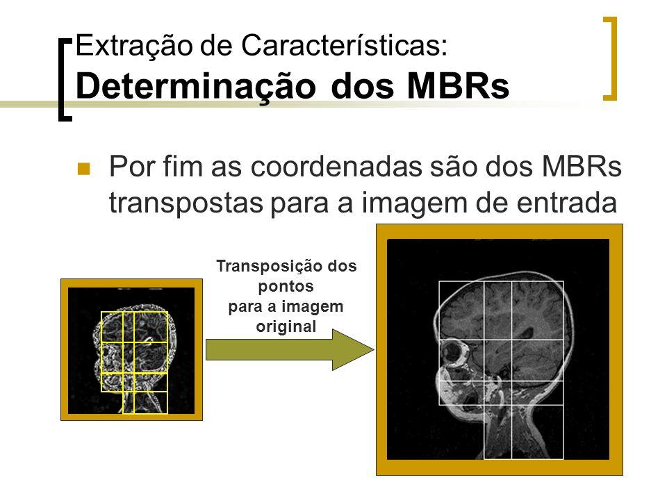 Extração de Características: Determinação dos MBRs Por fim as coordenadas são dos MBRs transpostas para a imagem de entrada Transposição dos pontos pa