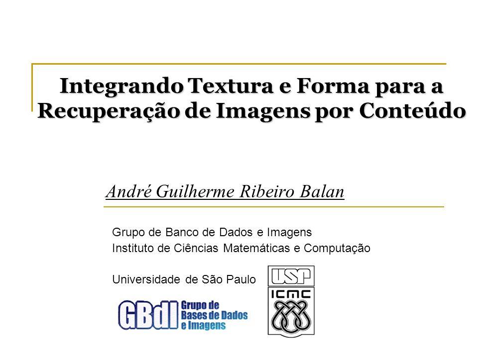 O vetor de características O conjunto de características proposto inclui: Medidas de forma da imagem segmentada; Medidas da imagem original considerando a segmentação.