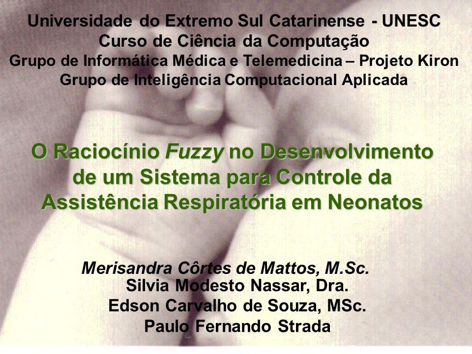 Apresenta –dados pessoais –gasometria arterial –parâmetros iniciais –sugestões de alterações dos parâmetros –módulo de explicação Desenvolvimento do SARE IX Congresso Brasileiro de Informática em Saúde - 2004
