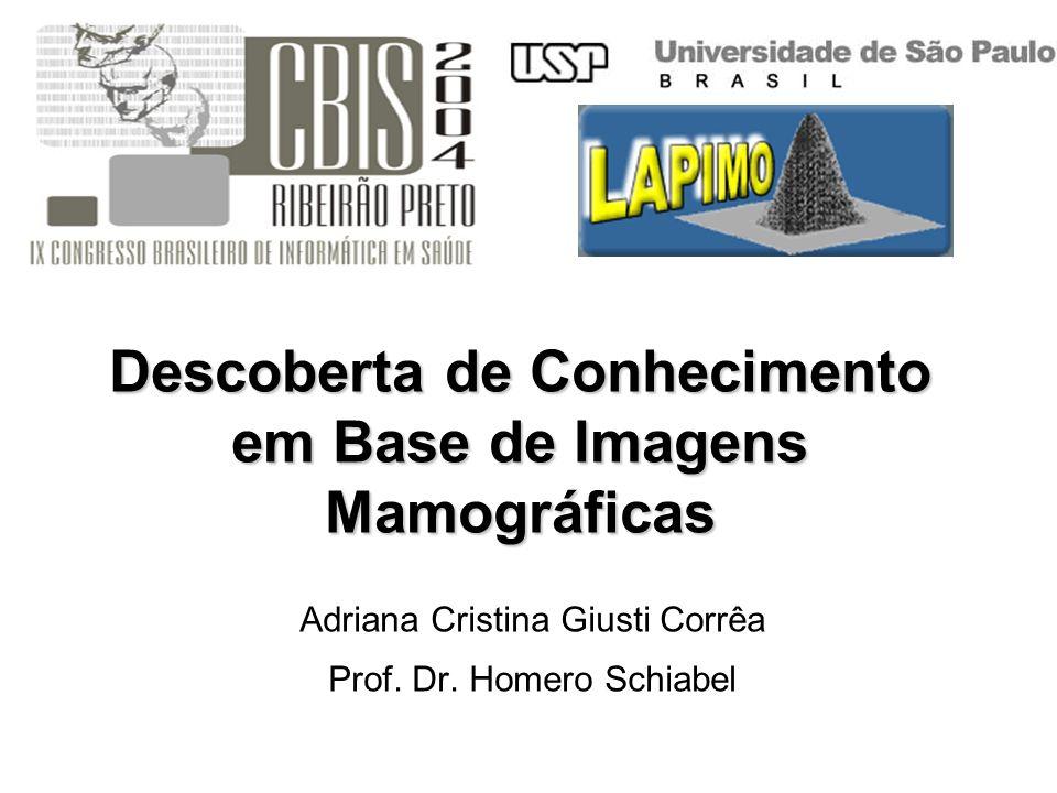 Descoberta de Conhecimento em Base de Imagens Mamográficas Adriana Cristina Giusti Corrêa Prof. Dr. Homero Schiabel
