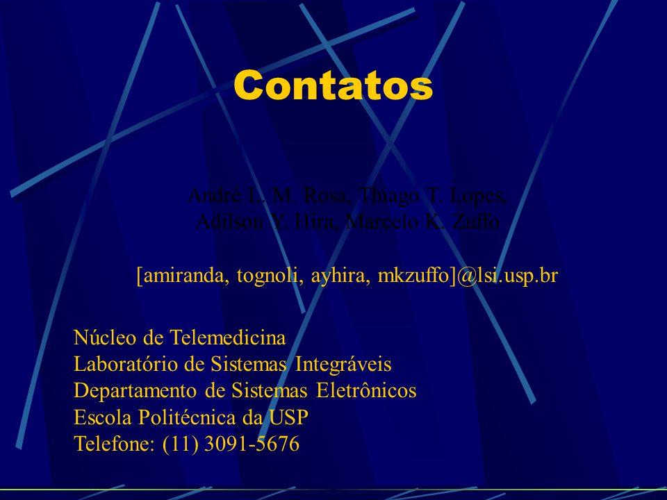 Contatos André L. M. Rosa, Thiago T. Lopes, Adilson Y. Hira, Marcelo K. Zuffo [amiranda, tognoli, ayhira, mkzuffo]@lsi.usp.br Núcleo de Telemedicina L