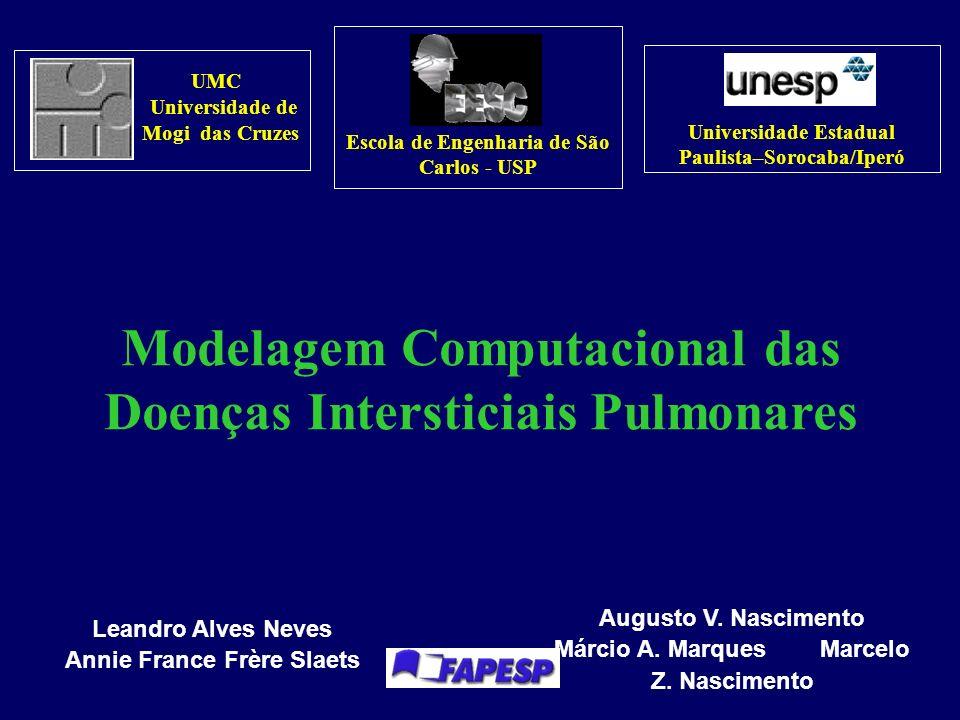 Modelagem Computacional das Doenças Intersticiais Pulmonares Leandro Alves Neves Annie France Frère Slaets Augusto V.