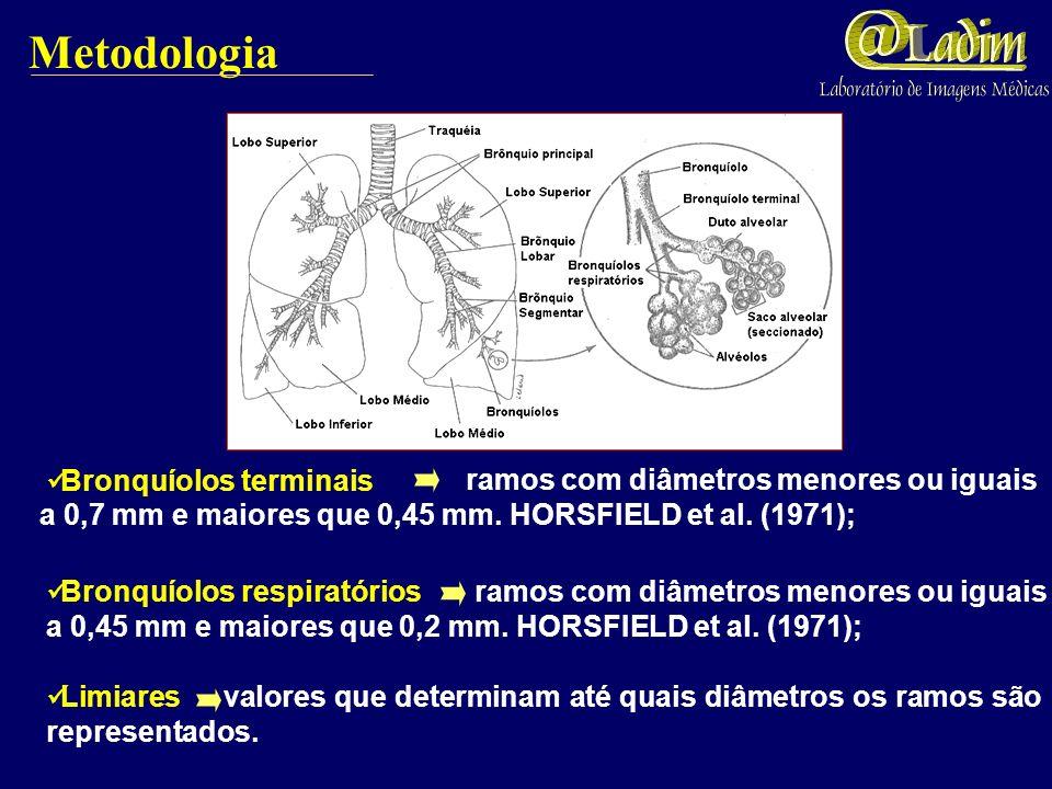 Ângulos o ângulo de bifurcação é o valor necessário para obter a maior distância entre o término do ramo e a borda do pulmão. Metodologia Comprimentos