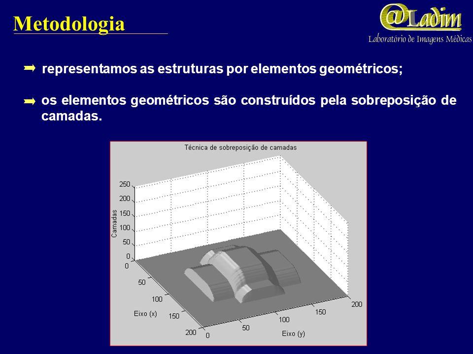 Bronquíolos terminais Bronquíolos respiratórios ramos com diâmetros menores ou iguais a 0,7 mm e maiores que 0,45 mm. HORSFIELD et al. (1971); ramos c