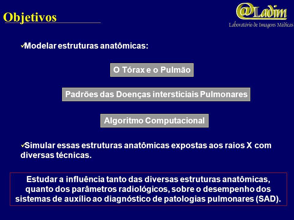 Discussões e Conclusões Número de divisões dos ramos; Comparações Quantitativas Número e diâmetros de bronquíolos terminais; São compatíveis com os dados encontrados nos modelos reais.