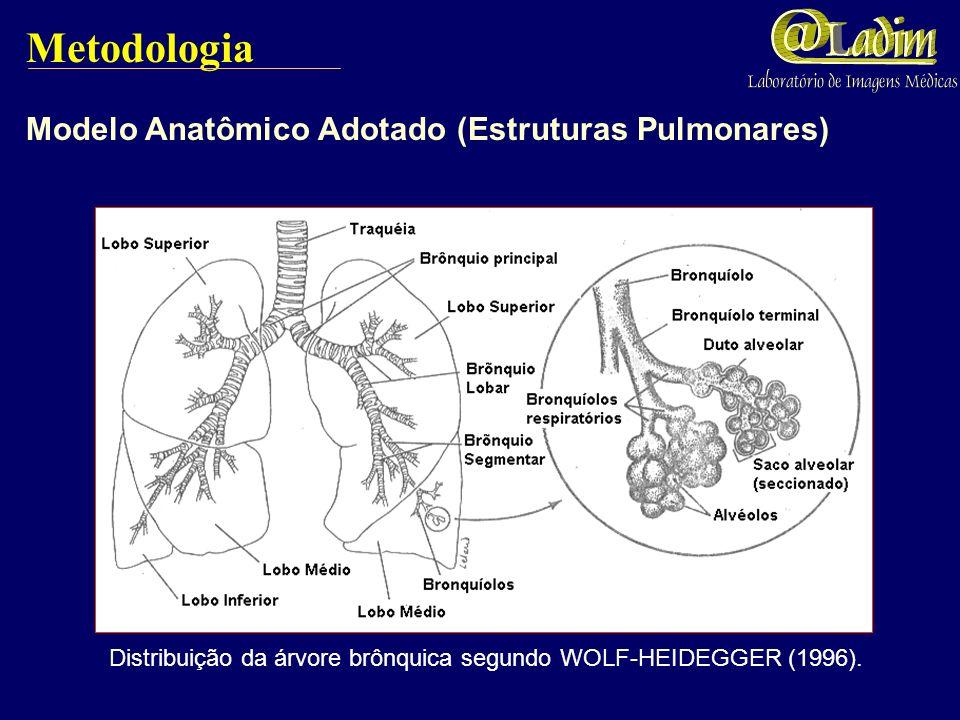 Resultados Simulações contemplando a traquéia; brônquios principais, lobares e segmentares; bronquíolos terminais e respiratórios.