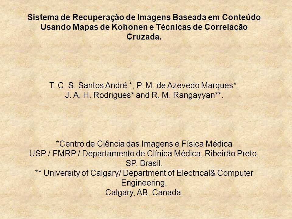 Sistema de Recuperação de Imagens Baseada em Conteúdo Usando Mapas de Kohonen e Técnicas de Correlação Cruzada. T. C. S. Santos André *, P. M. de Azev