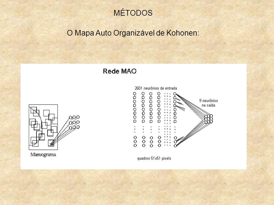MÉTODOS O Mapa Auto Organizável de Kohonen: