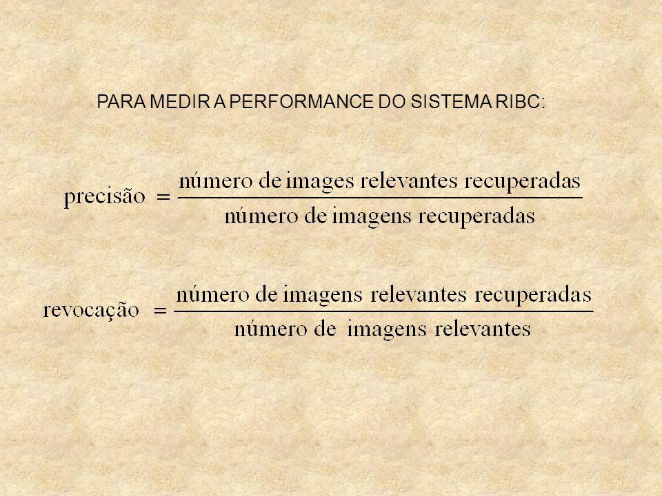 PARA MEDIR A PERFORMANCE DO SISTEMA RIBC:
