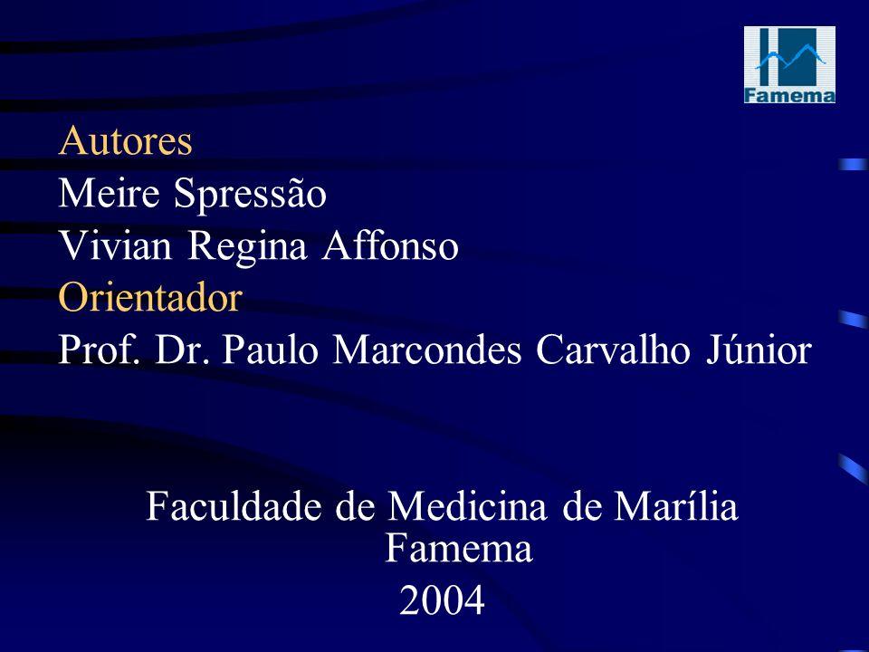 Autores Meire Spressão Vivian Regina Affonso Orientador Prof.