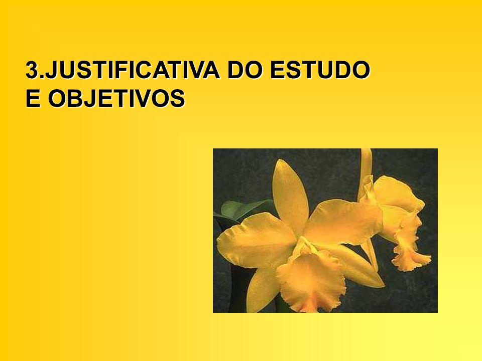 3.JUSTIFICATIVA DO ESTUDO E OBJETIVOS