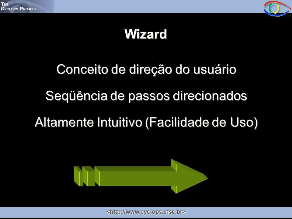 Wizard Conceito de direção do usuário Seqüência de passos direcionados Altamente Intuitivo (Facilidade de Uso)