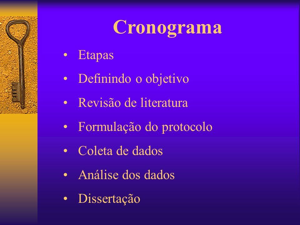 Cronograma Etapas Definindo o objetivo Revisão de literatura Formulação do protocolo Coleta de dados Análise dos dados Dissertação
