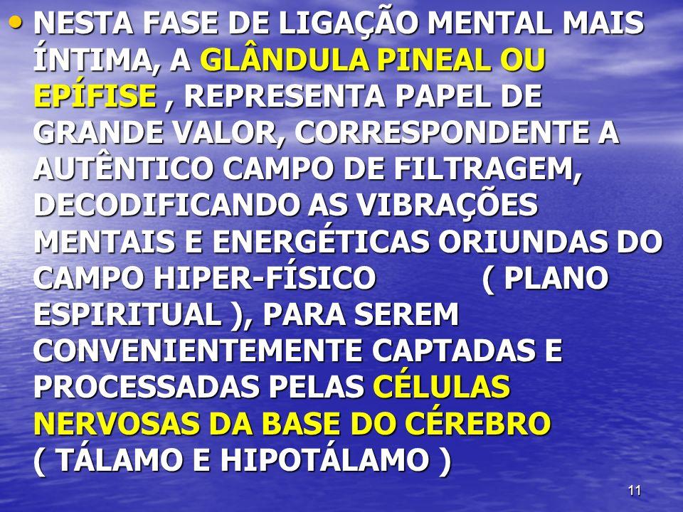 11 NESTA FASE DE LIGAÇÃO MENTAL MAIS ÍNTIMA, A GLÂNDULA PINEAL OU EPÍFISE, REPRESENTA PAPEL DE GRANDE VALOR, CORRESPONDENTE A AUTÊNTICO CAMPO DE FILTRAGEM, DECODIFICANDO AS VIBRAÇÕES MENTAIS E ENERGÉTICAS ORIUNDAS DO CAMPO HIPER-FÍSICO ( PLANO ESPIRITUAL ), PARA SEREM CONVENIENTEMENTE CAPTADAS E PROCESSADAS PELAS CÉLULAS NERVOSAS DA BASE DO CÉREBRO ( TÁLAMO E HIPOTÁLAMO ) NESTA FASE DE LIGAÇÃO MENTAL MAIS ÍNTIMA, A GLÂNDULA PINEAL OU EPÍFISE, REPRESENTA PAPEL DE GRANDE VALOR, CORRESPONDENTE A AUTÊNTICO CAMPO DE FILTRAGEM, DECODIFICANDO AS VIBRAÇÕES MENTAIS E ENERGÉTICAS ORIUNDAS DO CAMPO HIPER-FÍSICO ( PLANO ESPIRITUAL ), PARA SEREM CONVENIENTEMENTE CAPTADAS E PROCESSADAS PELAS CÉLULAS NERVOSAS DA BASE DO CÉREBRO ( TÁLAMO E HIPOTÁLAMO )