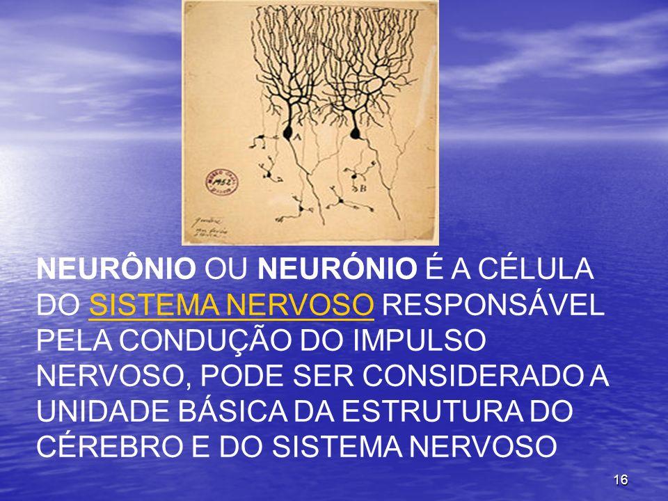 16 NEURÔNIO OU NEURÓNIO É A CÉLULA DO SISTEMA NERVOSO RESPONSÁVEL PELA CONDUÇÃO DO IMPULSO NERVOSO, PODE SER CONSIDERADO A UNIDADE BÁSICA DA ESTRUTURA DO CÉREBRO E DO SISTEMA NERVOSOSISTEMA NERVOSO
