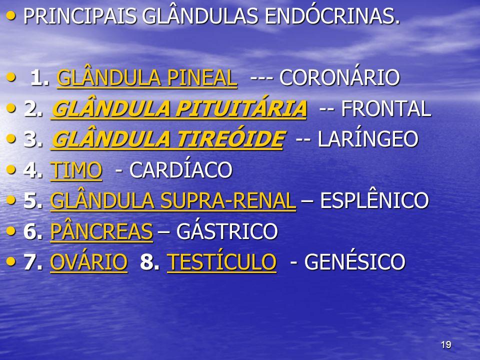 19 PRINCIPAIS GLÂNDULAS ENDÓCRINAS. PRINCIPAIS GLÂNDULAS ENDÓCRINAS. 1. GLÂNDULA PINEAL --- CORONÁRIO 1. GLÂNDULA PINEAL --- CORONÁRIOGLÂNDULA PINEALG