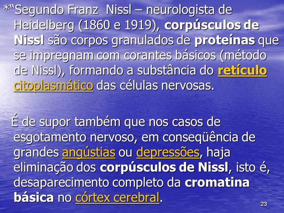 23 *Segundo Franz Nissl – neurologista de Heidelberg (1860 e 1919), corpúsculos de Nissl são corpos granulados de proteínas que se impregnam com corantes básicos (método de Nissl), formando a substância do retículo citoplasmático das células nervosas.