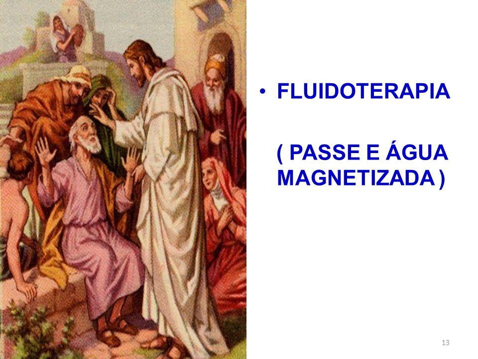 FLUIDOTERAPIA ( PASSE E ÁGUA MAGNETIZADA ) 13