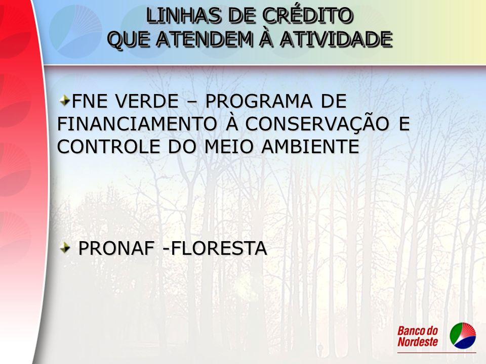Objetivo geral: Promover o desenvolvimento de atividades produtivas que tenham ênfase na conservação ambiental, estimulando a utilização de itens de proteção ao meio ambiente dos empreendimentos produtivos, contribuindo para a competitividade das empresas FNE VERDE – Programa de Financiamento à Conservação e Controle do Meio Ambiente
