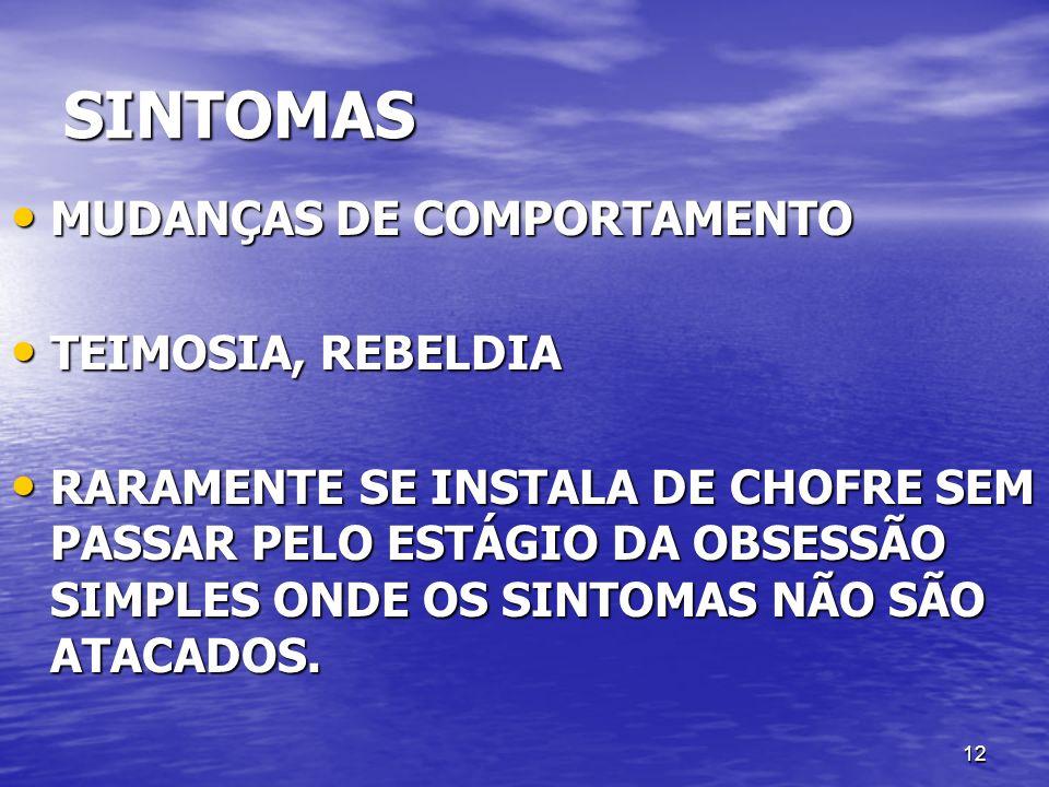 12 SINTOMAS MUDANÇAS DE COMPORTAMENTO MUDANÇAS DE COMPORTAMENTO TEIMOSIA, REBELDIA TEIMOSIA, REBELDIA RARAMENTE SE INSTALA DE CHOFRE SEM PASSAR PELO E