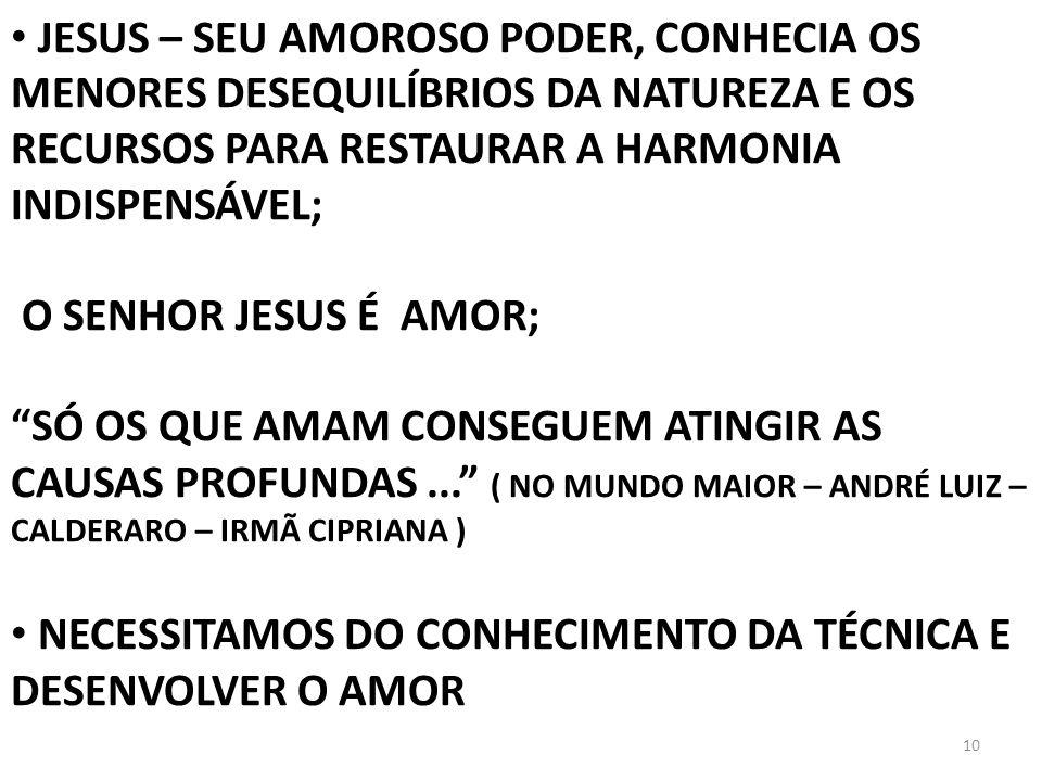 10 JESUS – SEU AMOROSO PODER, CONHECIA OS MENORES DESEQUILÍBRIOS DA NATUREZA E OS RECURSOS PARA RESTAURAR A HARMONIA INDISPENSÁVEL; O SENHOR JESUS É A
