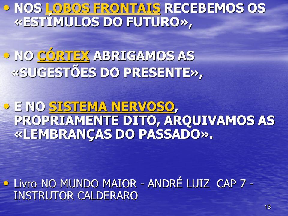 13 NOS LOBOS FRONTAIS RECEBEMOS OS «ESTÍMULOS DO FUTURO», NOS LOBOS FRONTAIS RECEBEMOS OS «ESTÍMULOS DO FUTURO», LOBOS FRONTAISLOBOS FRONTAIS NO CÓRTE