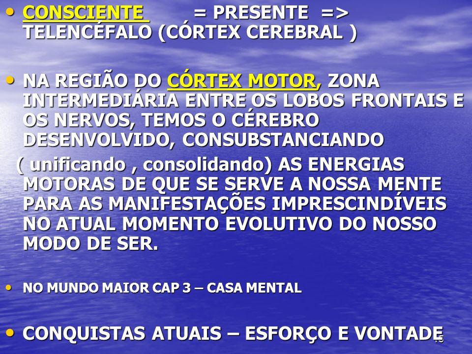 15 CONSCIENTE = PRESENTE => TELENCÉFALO (CÓRTEX CEREBRAL ) CONSCIENTE = PRESENTE => TELENCÉFALO (CÓRTEX CEREBRAL ) NA REGIÃO DO CÓRTEX MOTOR, ZONA INT