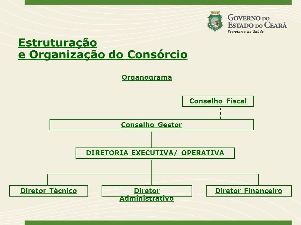 Organograma Conselho Fiscal Conselho Gestor DIRETORIA EXECUTIVA/ OPERATIVA Diretor TécnicoDiretor Administrativo Diretor Financeiro