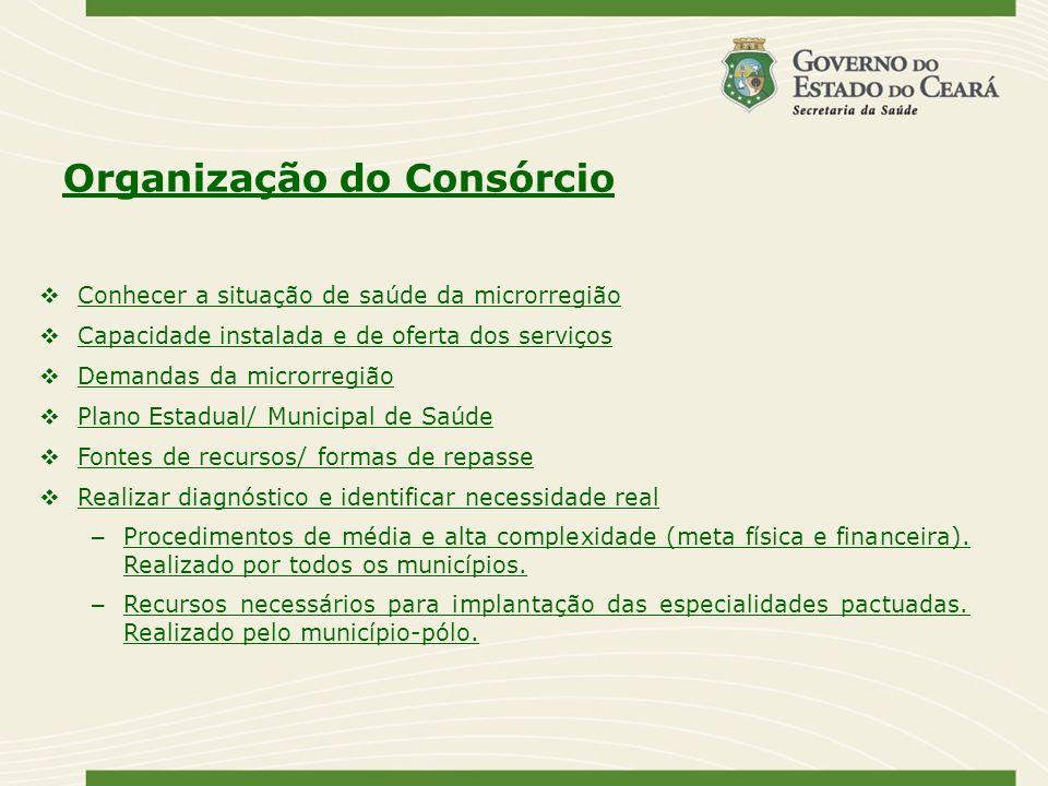 Organização do Consórcio Conhecer a situação de saúde da microrregião Capacidade instalada e de oferta dos serviços Demandas da microrregião Plano Est