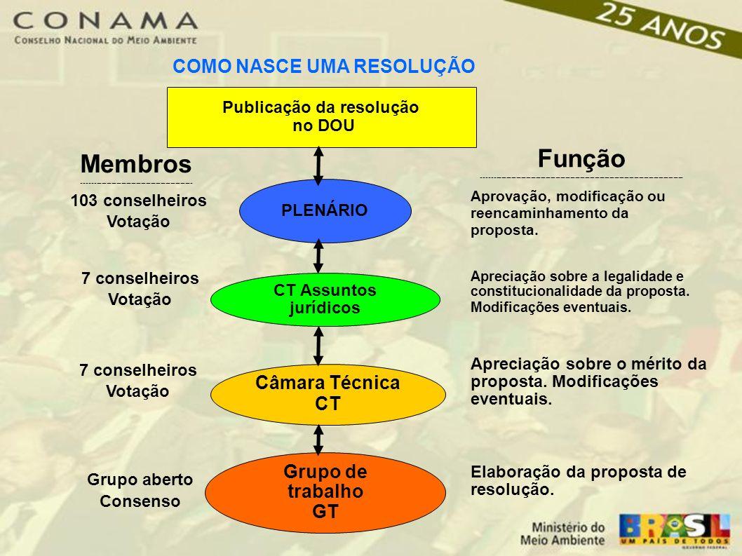 Apreciação sobre a legalidade e constitucionalidade da proposta.