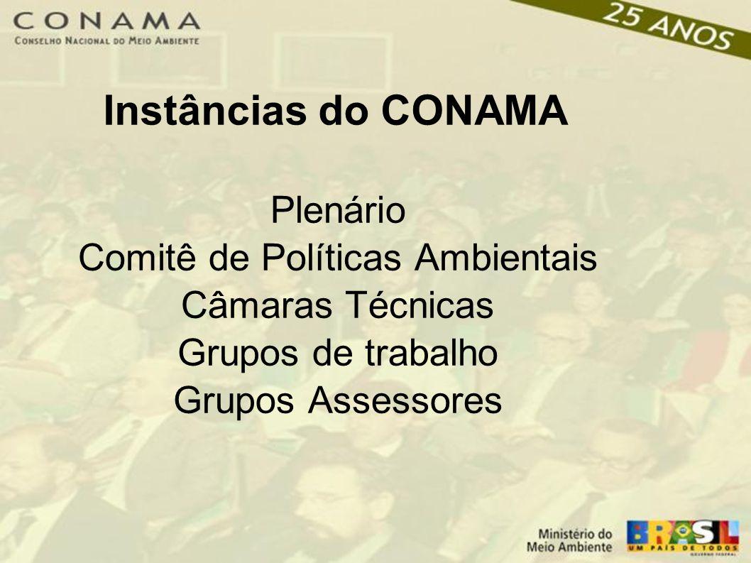 Instâncias do CONAMA Plenário Comitê de Políticas Ambientais Câmaras Técnicas Grupos de trabalho Grupos Assessores