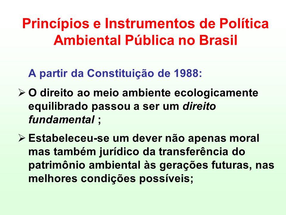 Princípios e Instrumentos de Política Ambiental Pública no Brasil A partir da Constituição de 1988: O direito ao meio ambiente ecologicamente equilibr