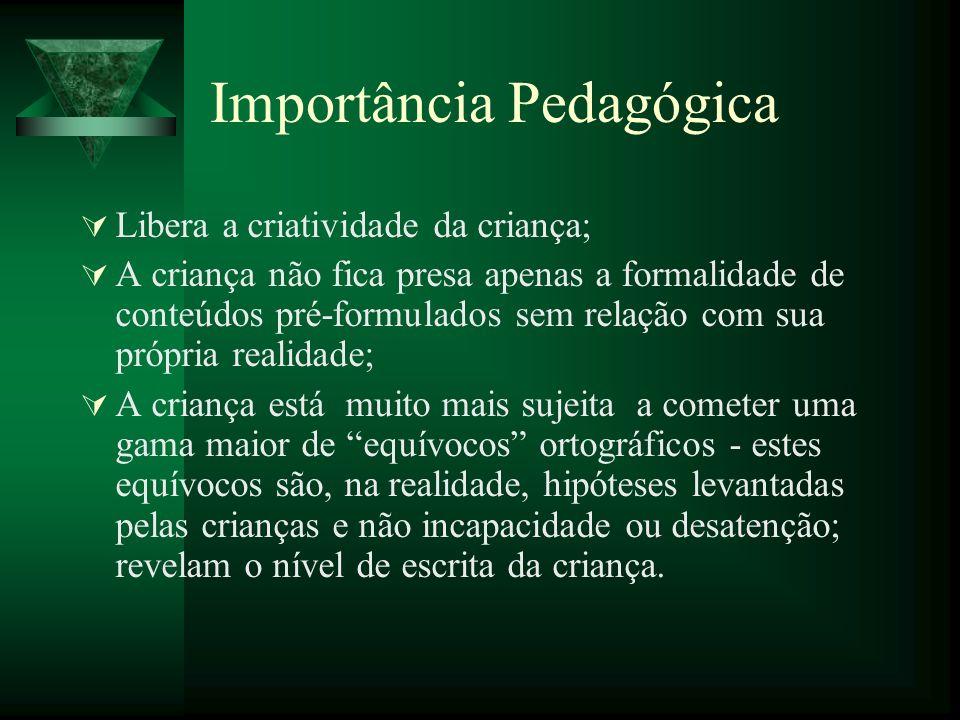 Importância Pedagógica Libera a criatividade da criança; A criança não fica presa apenas a formalidade de conteúdos pré-formulados sem relação com sua