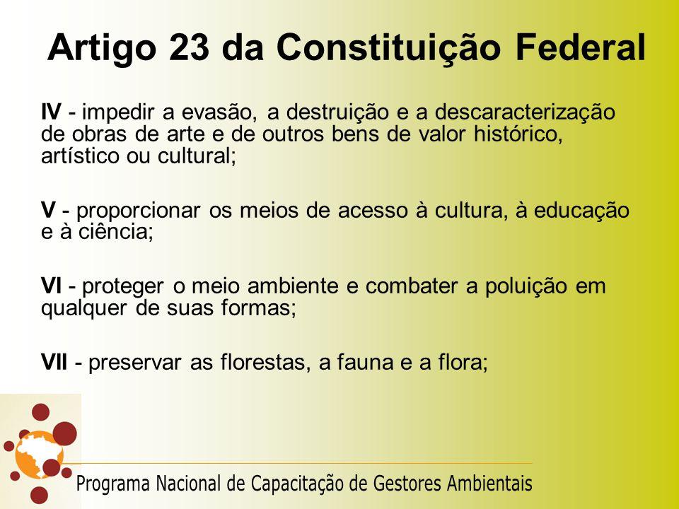 Artigo 23 da Constituição Federal IV - impedir a evasão, a destruição e a descaracterização de obras de arte e de outros bens de valor histórico, artí