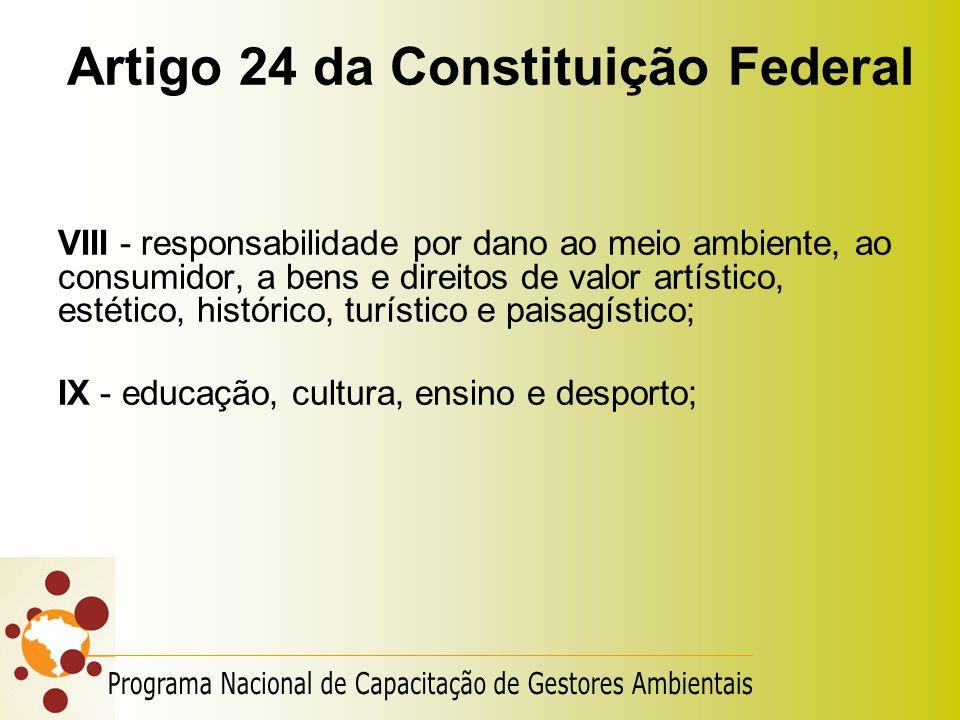 Artigo 24 da Constituição Federal VIII - responsabilidade por dano ao meio ambiente, ao consumidor, a bens e direitos de valor artístico, estético, hi