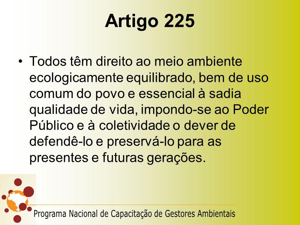 Artigo 225 Todos têm direito ao meio ambiente ecologicamente equilibrado, bem de uso comum do povo e essencial à sadia qualidade de vida, impondo-se a