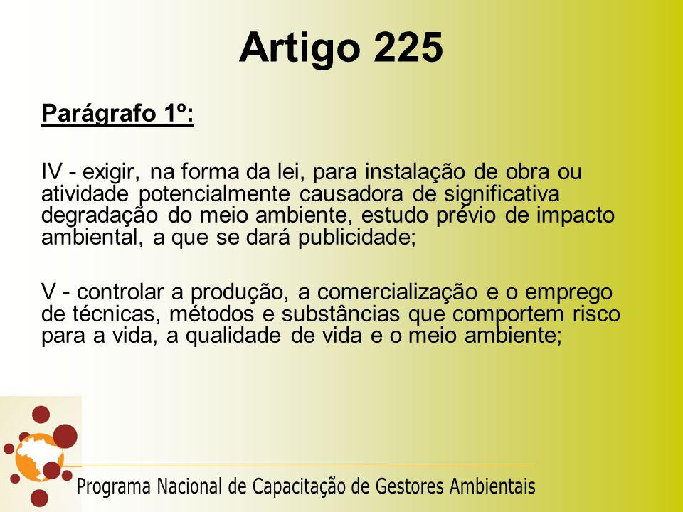 Artigo 225 Parágrafo 1º: IV - exigir, na forma da lei, para instalação de obra ou atividade potencialmente causadora de significativa degradação do me
