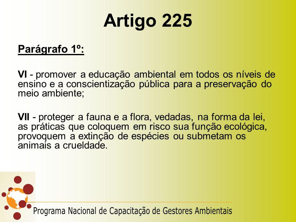 Artigo 225 Parágrafo 1º: VI - promover a educação ambiental em todos os níveis de ensino e a conscientização pública para a preservação do meio ambien