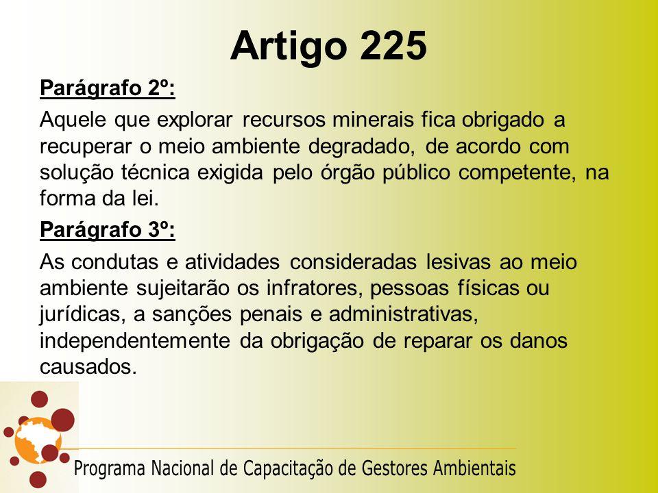 Artigo 225 Parágrafo 2º: Aquele que explorar recursos minerais fica obrigado a recuperar o meio ambiente degradado, de acordo com solução técnica exig