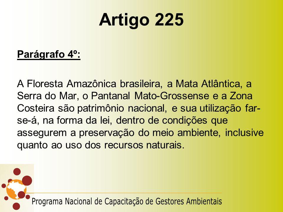 Artigo 225 Parágrafo 4º: A Floresta Amazônica brasileira, a Mata Atlântica, a Serra do Mar, o Pantanal Mato-Grossense e a Zona Costeira são patrimônio