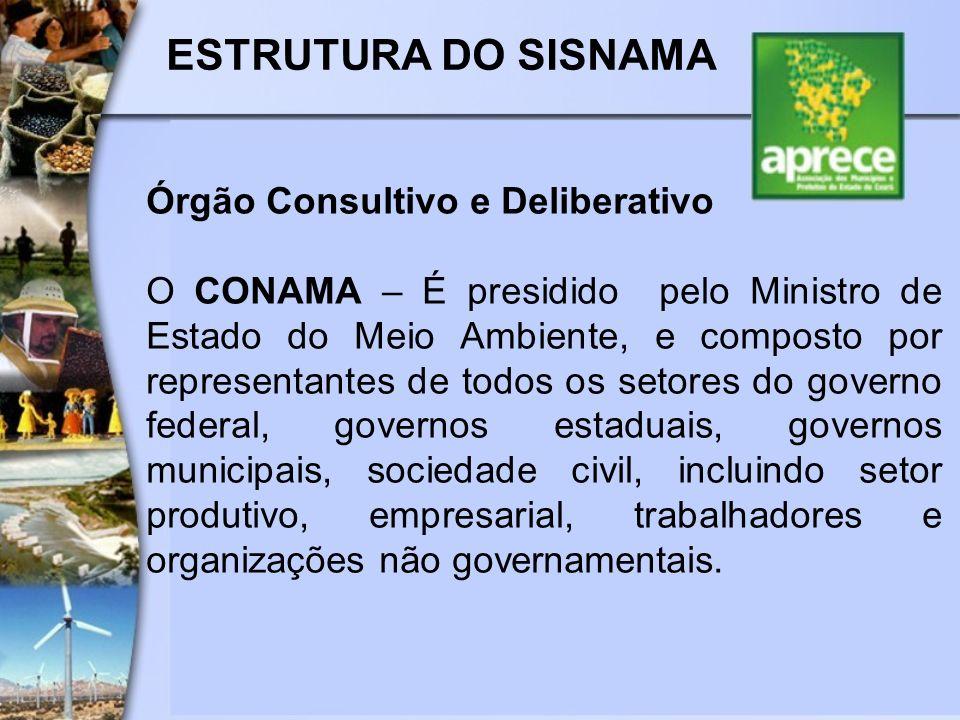 ESTRUTURA DO SISNAMA Órgão Consultivo e Deliberativo O CONAMA – É presidido pelo Ministro de Estado do Meio Ambiente, e composto por representantes de