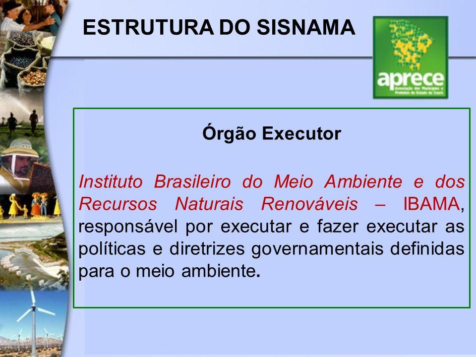 ESTRUTURA DO SISNAMA Órgão Executor Instituto Brasileiro do Meio Ambiente e dos Recursos Naturais Renováveis – IBAMA, responsável por executar e fazer